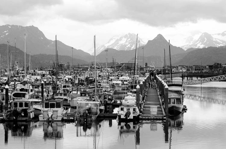 A harbor along the Homer Spit in Alaska