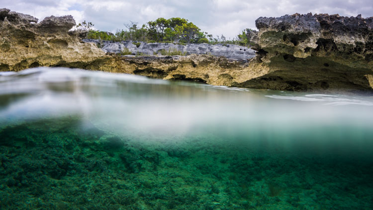 A lucky shot of the Bahamian land/seascape